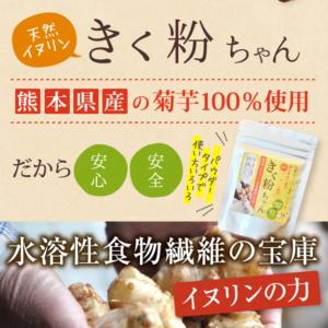 熊本県天然菊芋の粉末パウダーきく粉ちゃんについて簡単にまとめています。